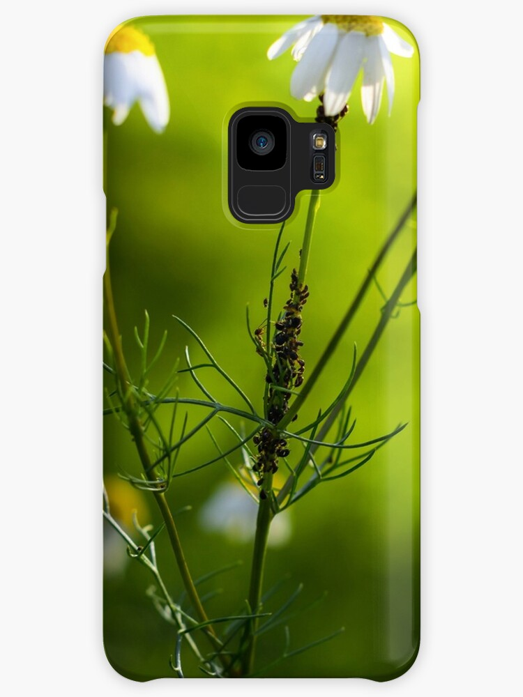 OCCUPY DAISY STREET [Samsung Galaxy cases/skins] by Matti Ollikainen
