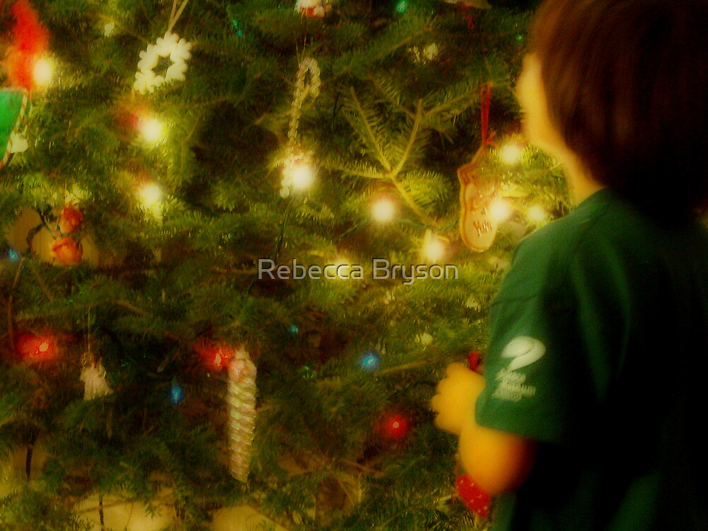 Where to Put This Ornament.. by Rebecca Bryson