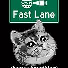Save Net Neutrality I Can Haz Internet Fast Lane  by electrovista