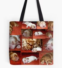 Candy is a Moomy :) Tote Bag
