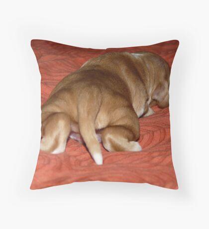 Iulie Throw Pillow