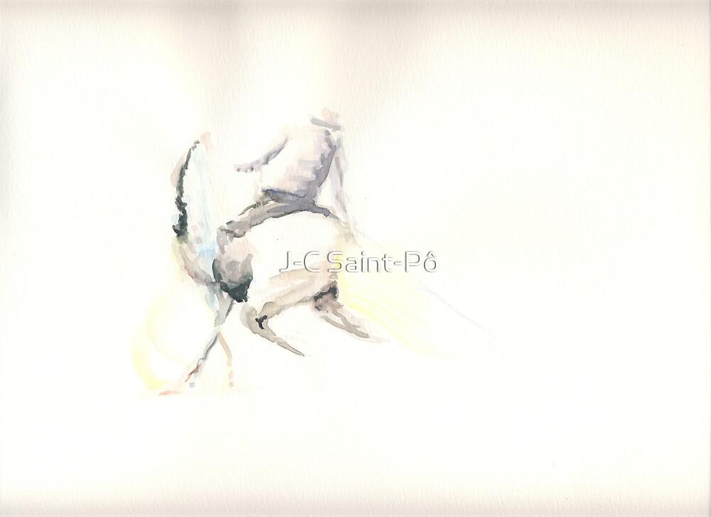 Picador by J-C Saint-Pô