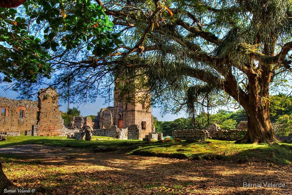 Old Panama by Bernai Velarde PCE 3309