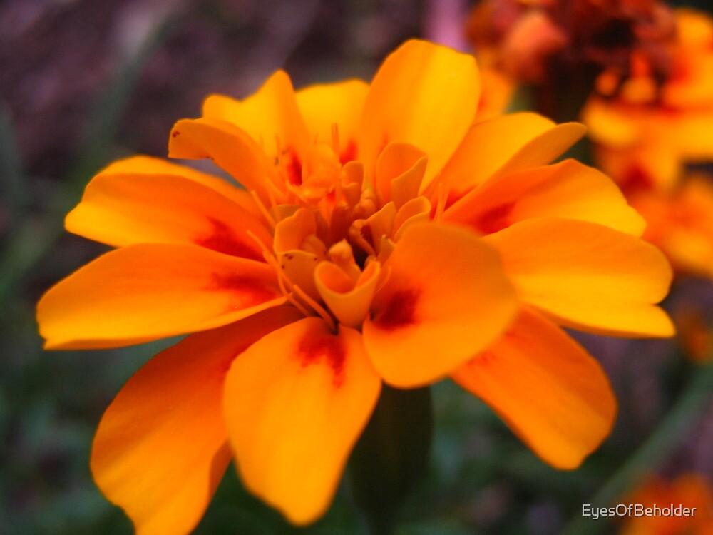 Flower by EyesOfBeholder