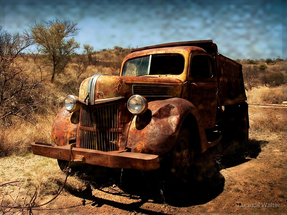 The Old Ford Truck ~ Ruby, Arizona by Lucinda Walter