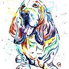 Basset Hound - Basset Hound Walk 2016 by Lisa Whitehouse