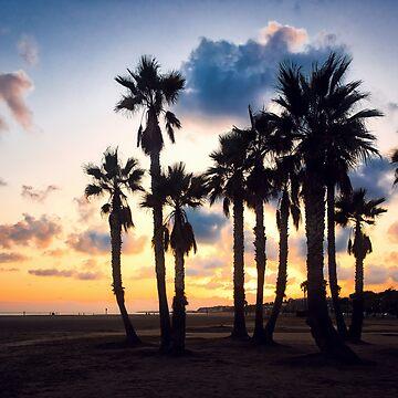 Evening El Vendrell by Lanas