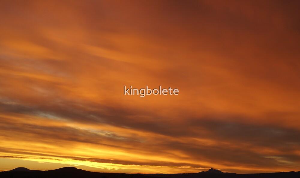 Central Oregon #5. by kingbolete