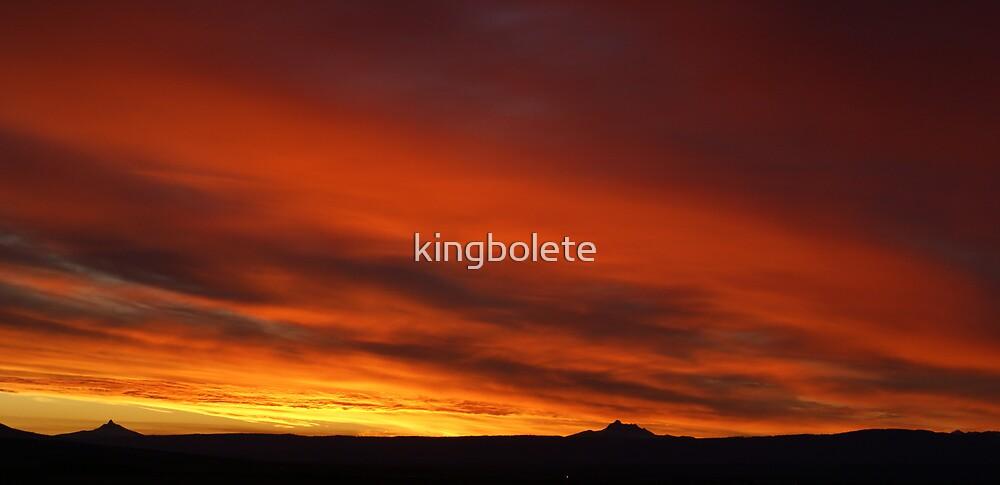 Oregon sunset #20 by kingbolete