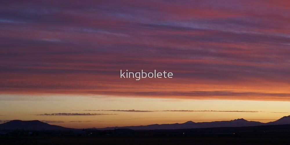 Oregon sunset #21 by kingbolete