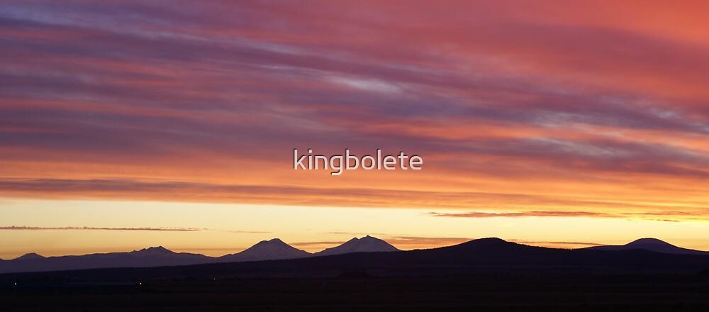 Oregon sunset #22 by kingbolete