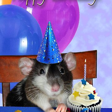 Birthday Dumbo Rat by jkartlife