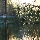 National Gallery Window III by Rupert Russell