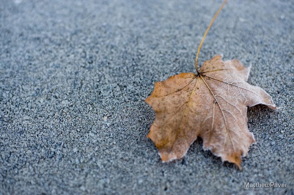 Frosty winter leaf by MatthewPaver