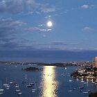 Moonrise, Elizabeth Bay by John Douglas