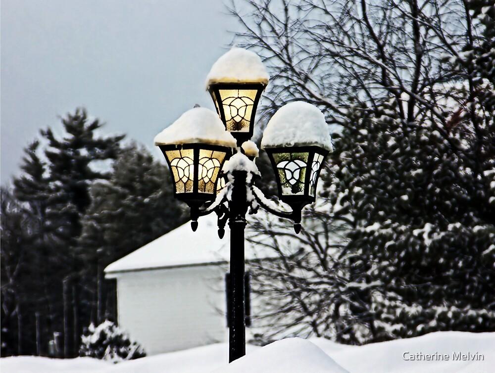 Morning Illumination by Catherine Melvin