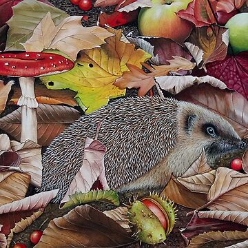 Autumn Hedgehog  by brooke1312