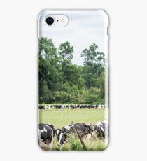 11515 milk iPhone Case/Skin