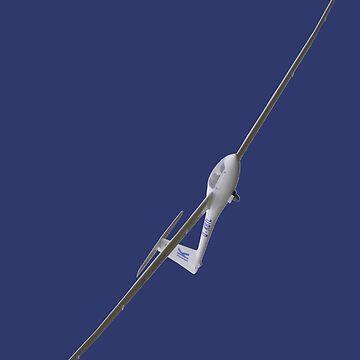 Plane & Simple - Glider D-KBTL by muz2142