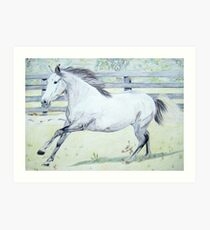Canter! Art Print