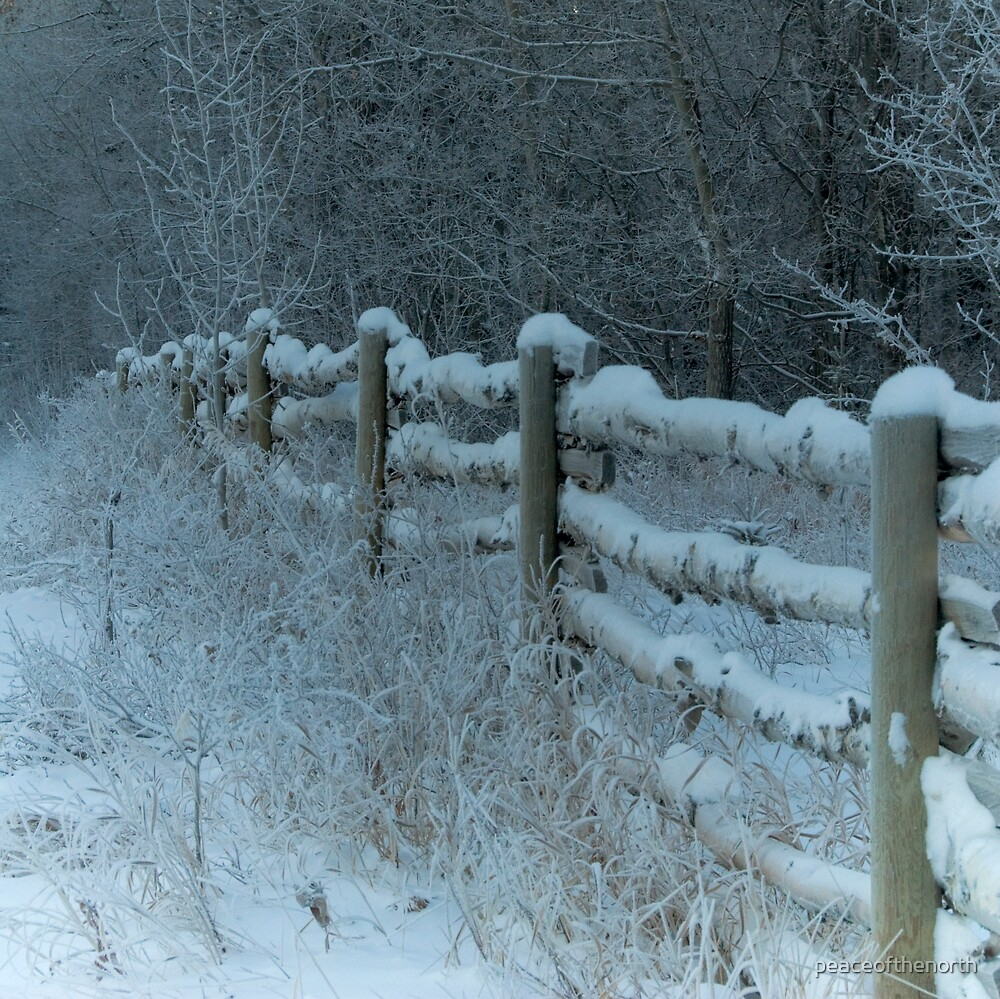 Country Fence Winter Style by peaceofthenorth