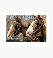 workhorses at work Art Print