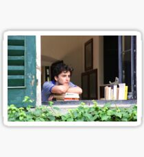 Call Me By Your Name - Timothée Chalamet Sticker