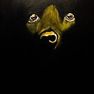 A Dark Night by thegoose