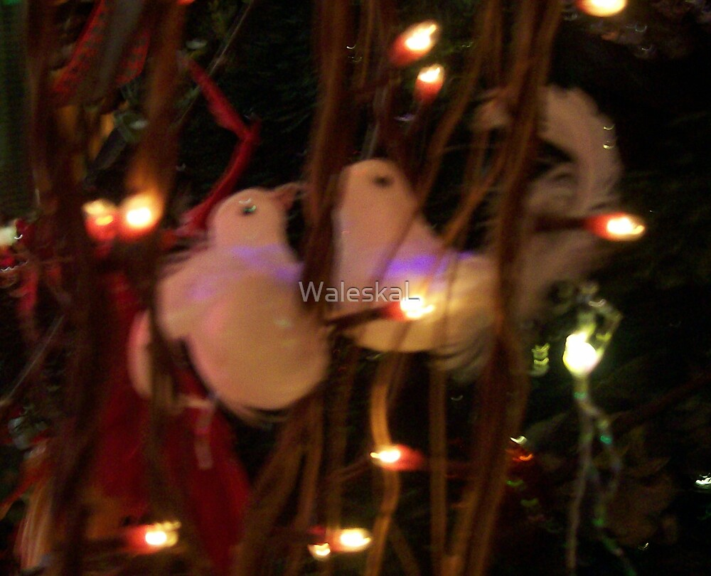 Birds and Lights by WaleskaL