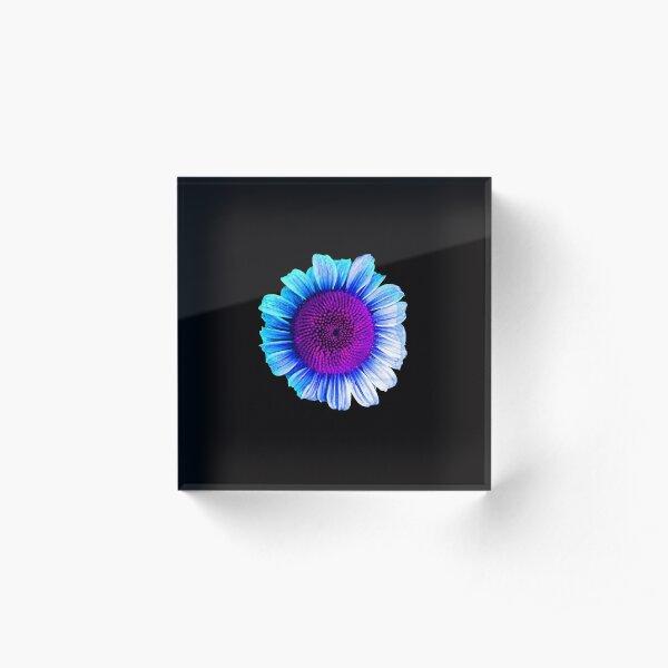 Neon Daisy Acrylic Block