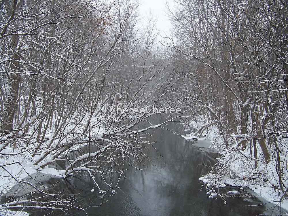 Winter River by ChereeCheree