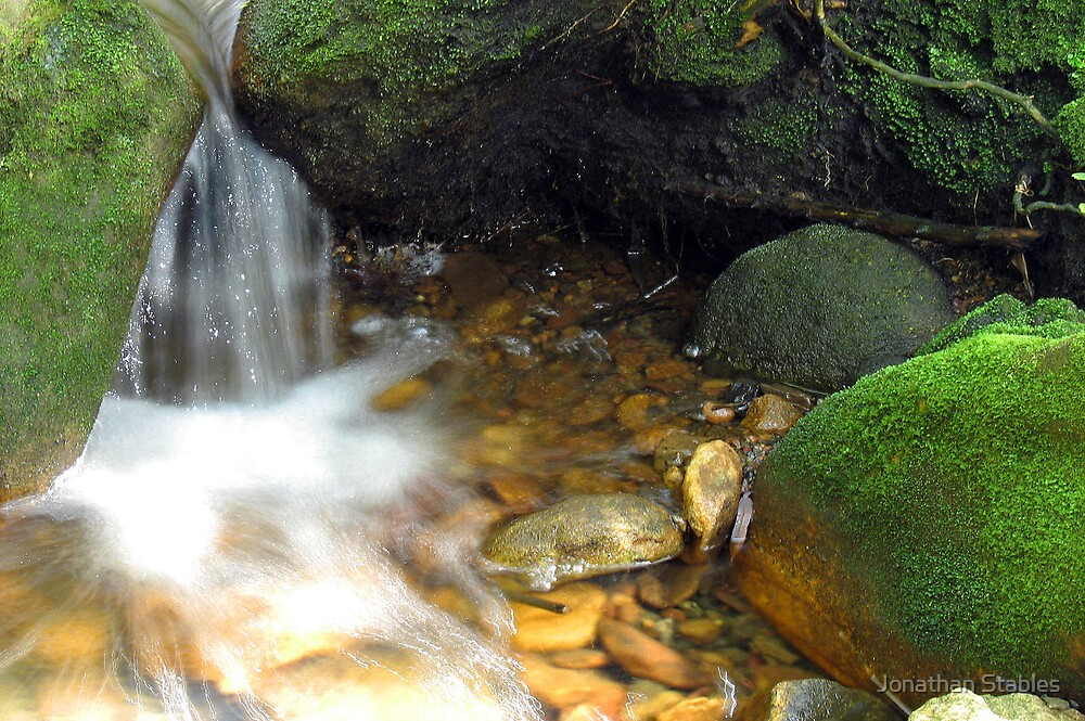 Stream by Jonathan Stables