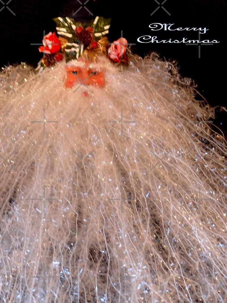 Merry Christmas by Gail Bridger
