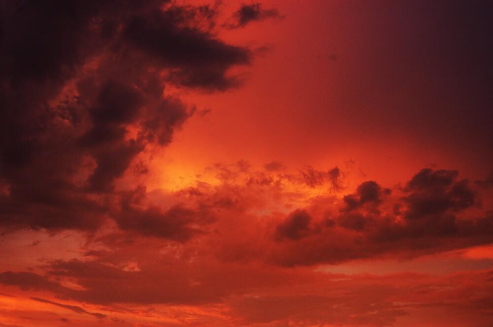 Fire In The Sky by Tara Johnson