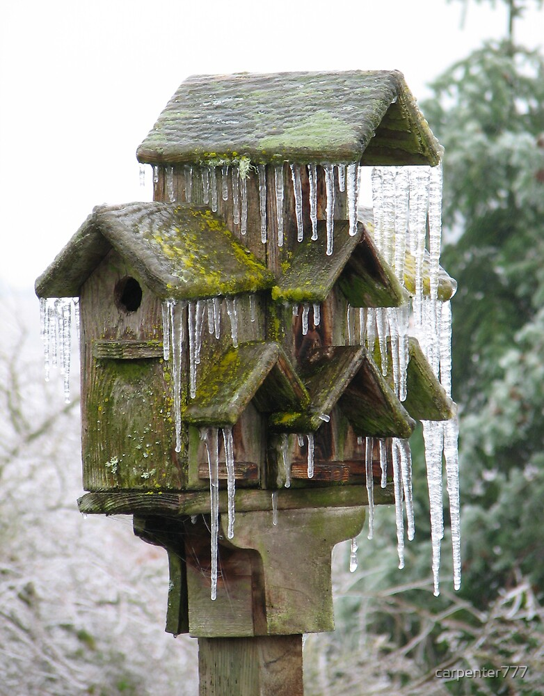 Ice house by carpenter777