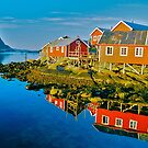 Reine . Lofoten . Norway . Views: 10919. Has been sold. by © Andrzej Goszcz,M.D. Ph.D