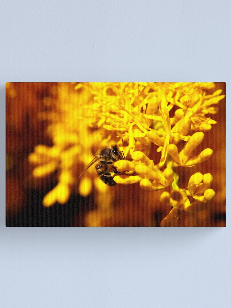Alternate view of Bee on christmas tree Canvas Print