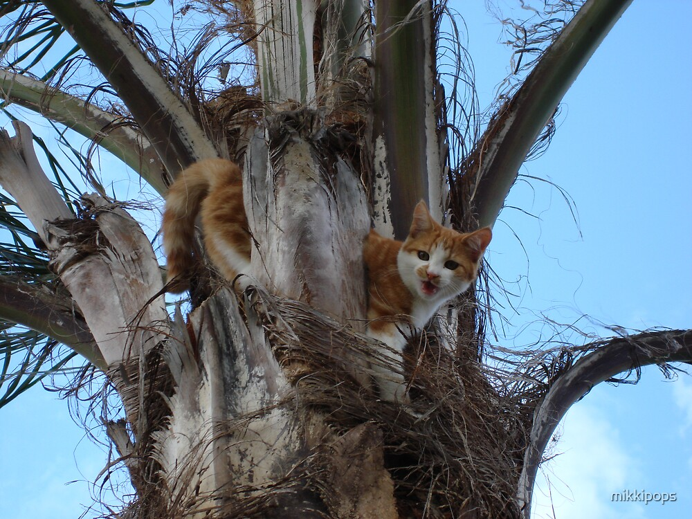 cat in tree by mikkipops