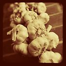 Garlic by Ross Jardine
