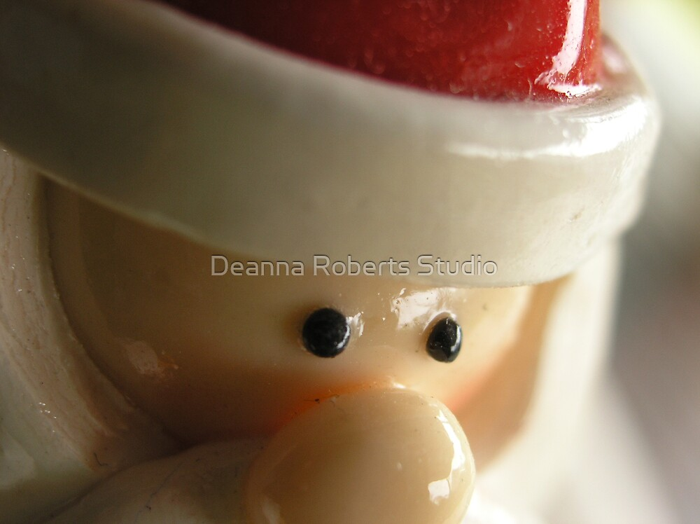 Christmas Nose by Deanna Roberts Think in Pictures
