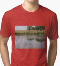 Wild duck and nest Tri-blend T-Shirt