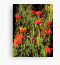 Showy flowers Canvas Print