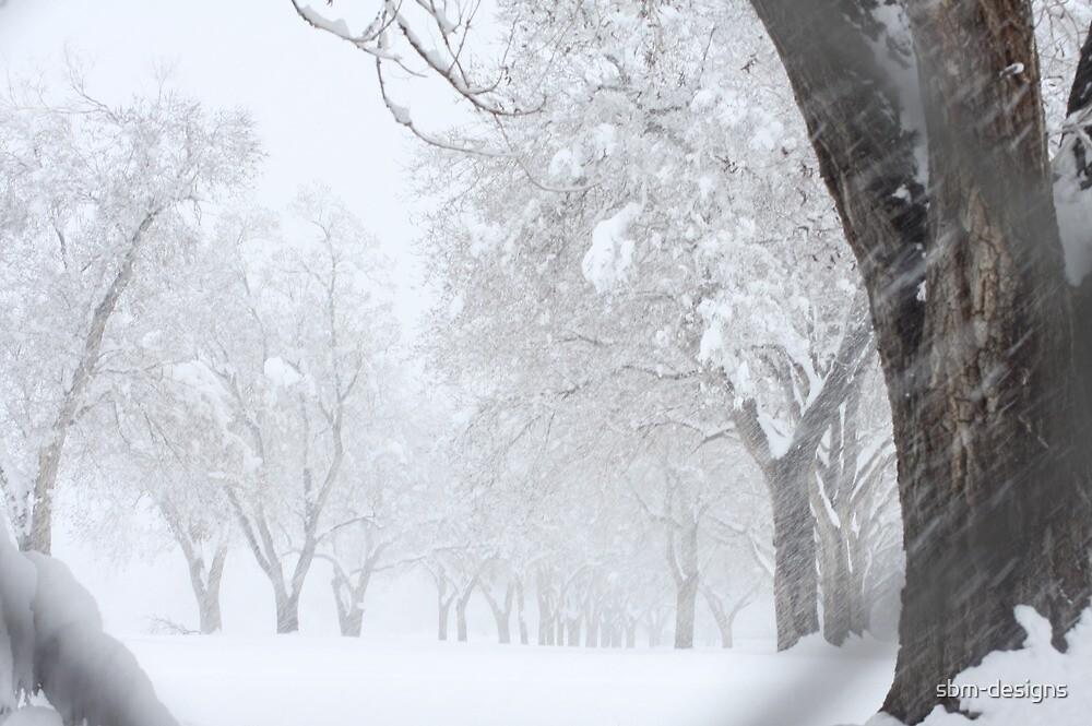 winter wonder by sbm-designs