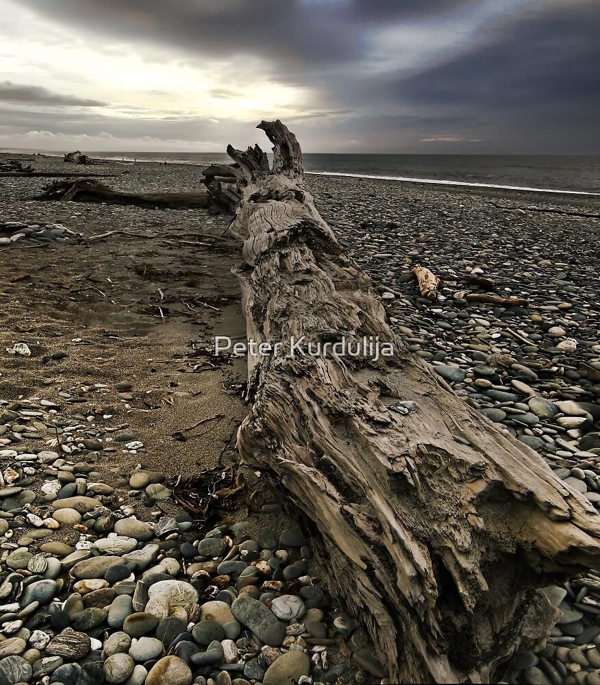 Driftwood Sans Drift by Peter Kurdulija