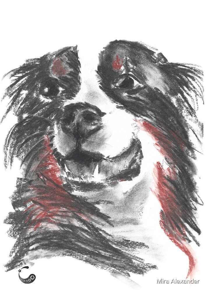 Hund (Kohle / Charcoal Animals) von Mira Alexander