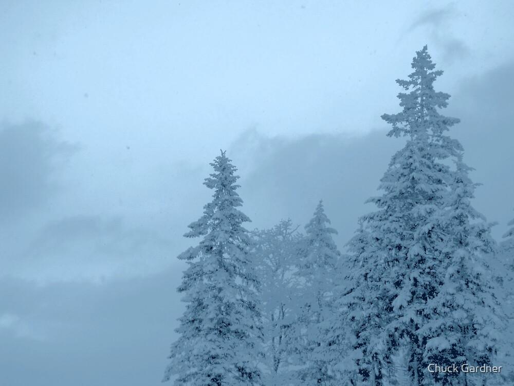 Blue Snow at  Morning Dawn  by Chuck Gardner