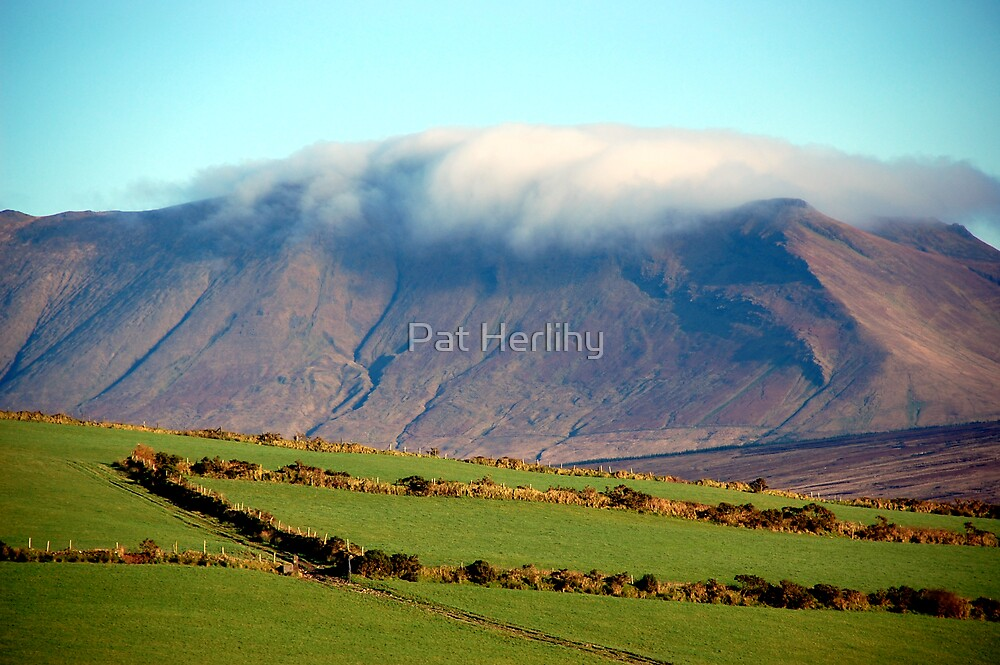 Low Winter Sun on the Mountain 2 by Pat Herlihy