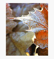 Ice Rhyme Photographic Print