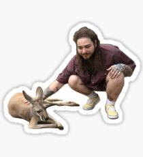 met a koala today  Sticker