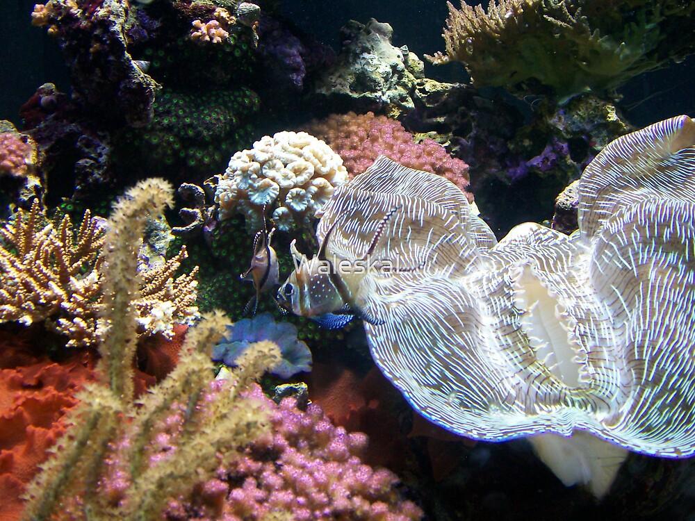 Underwater Fantasy by WaleskaL